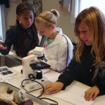 The microscope lab at Headlands Institute
